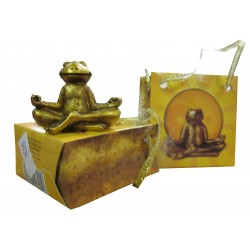 "Yoga grenouille ""Mantra"""