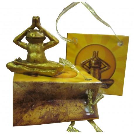 "Yoga grenouille""Mudra"""