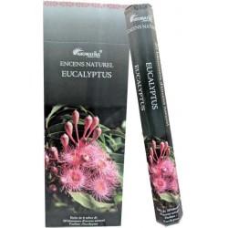 "Encens  eucalyptus ""Aromatika"" hexa"