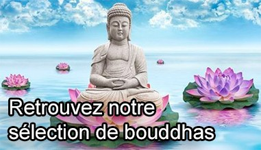 Selection de bouddhas