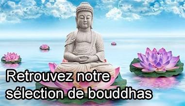 Selection de bouddhas
